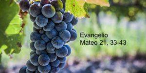 Mateo 21, 33-43