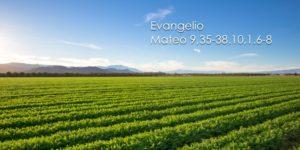 Mateo 9,35-38.10,1.6-8