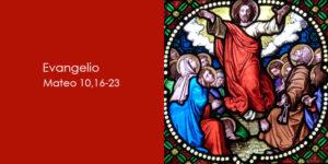 Mateo-10,16-23