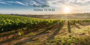 Mateo-13-18-23